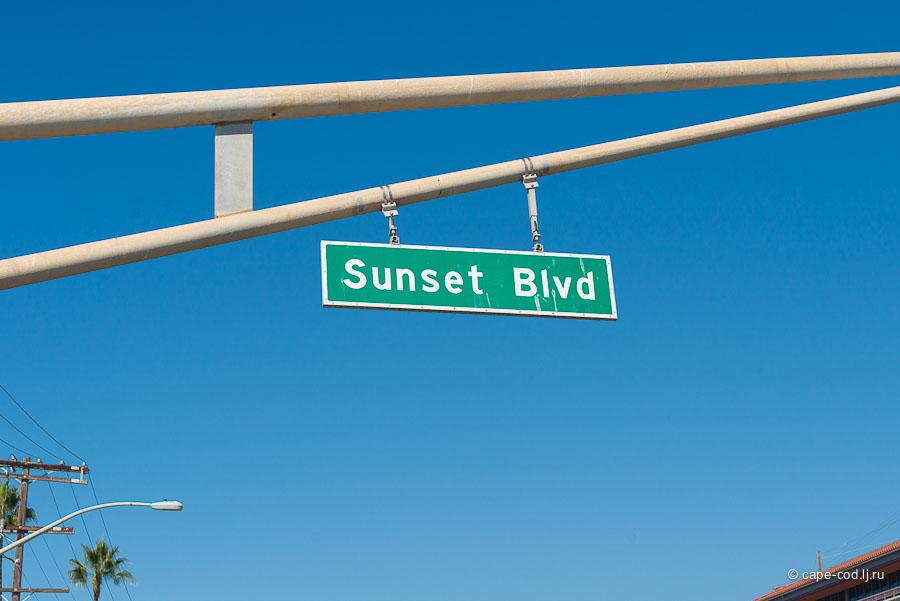 Месяц американской жизни, Лос-Анджелес, США, отзыв
